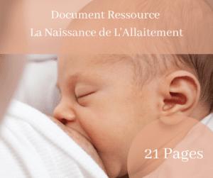Ebook La Naissance de L'allaitement